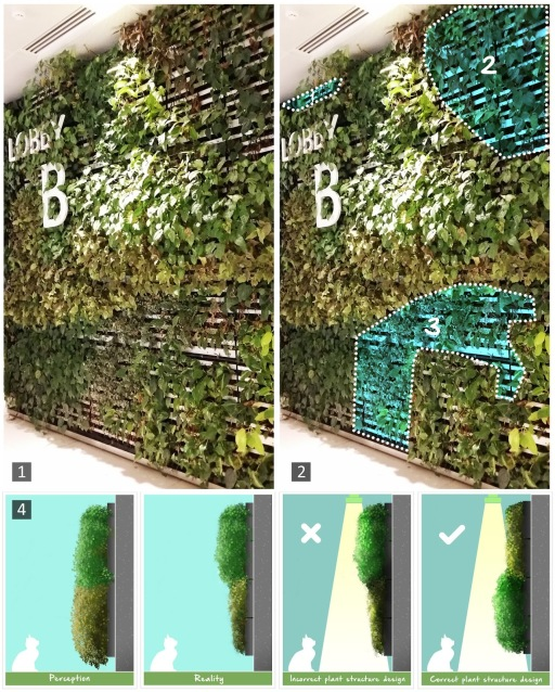 green wall light and plant structure
